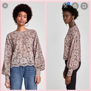 Zara mauve floral lace crop top with puff sleeves